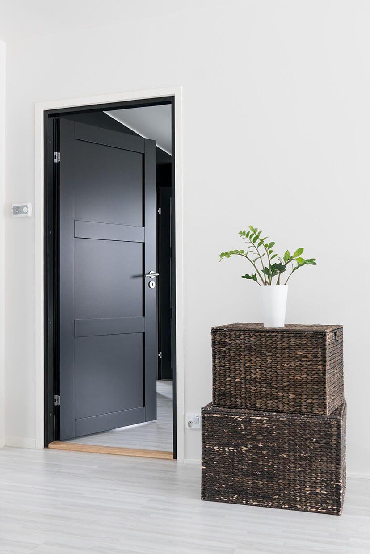 Тъмен облик на интериорната врата